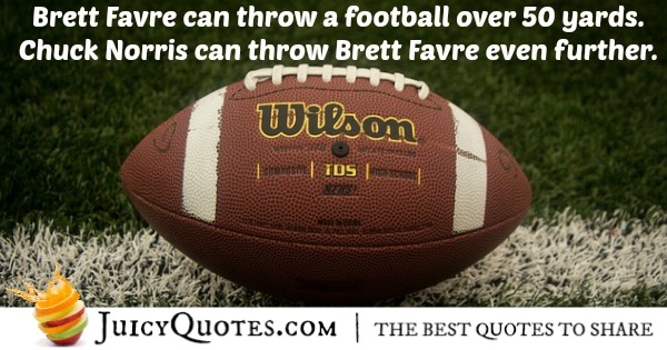 Brett Favre Funny Quotes: Funny Chuck Norris Jokes And Puns