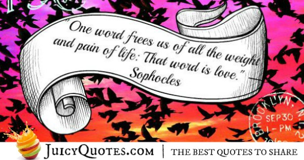 Cute Love Quote - Sophocles