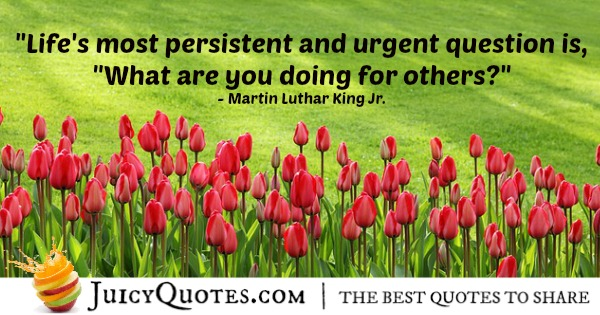 Quote About Life - Martin Luthar King Jr.
