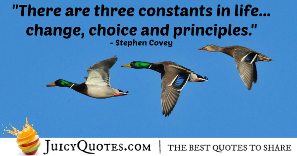 Quote About Life - Stephen Covey