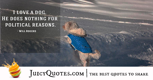 Quotes About Dogs - 20