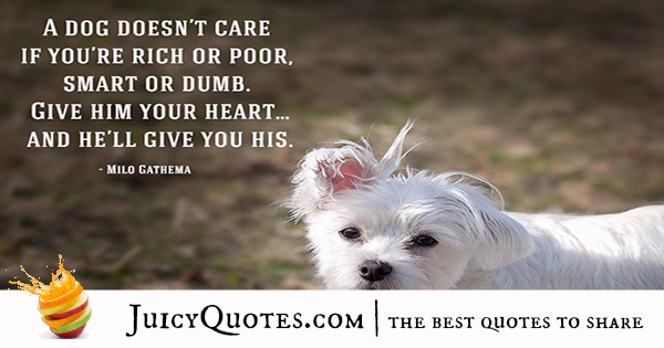 Quotes About Dogs - 25