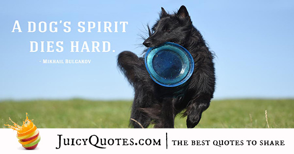 Quotes About Dogs - 26
