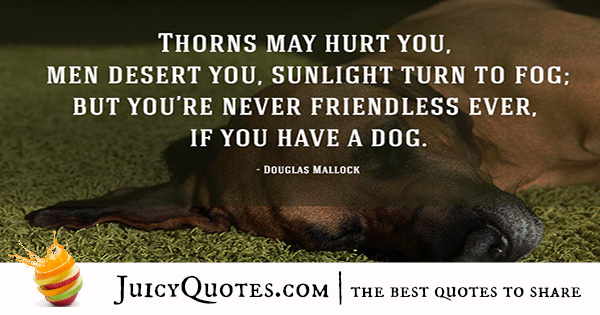 Quotes About Dogs - 3