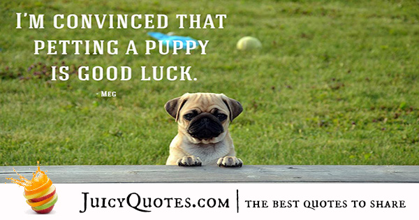 Quotes About Dogs - 7