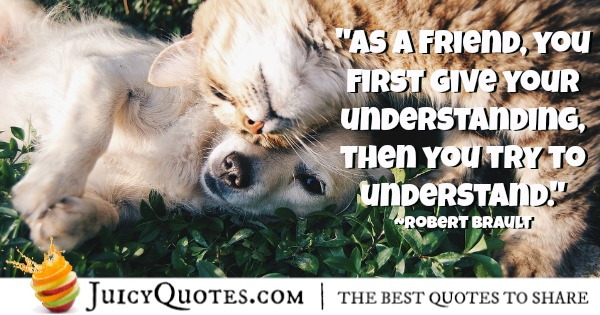 friendship-quote-robert-brault