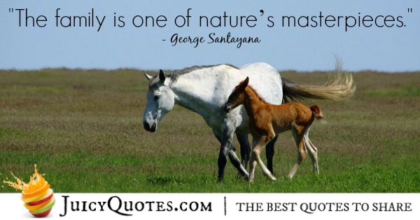 Family-Quote-George-Santayana-2