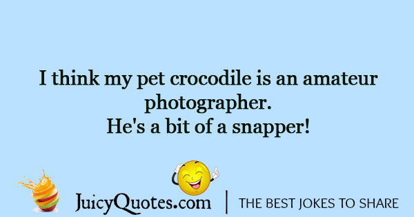 Funny Photography Jokes And Puns Will Make You Laugh Page 2