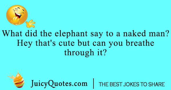 dirty elephant joke with picture