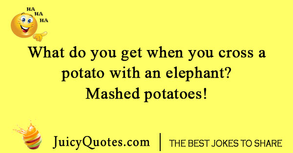 elephant and potato joke with picture