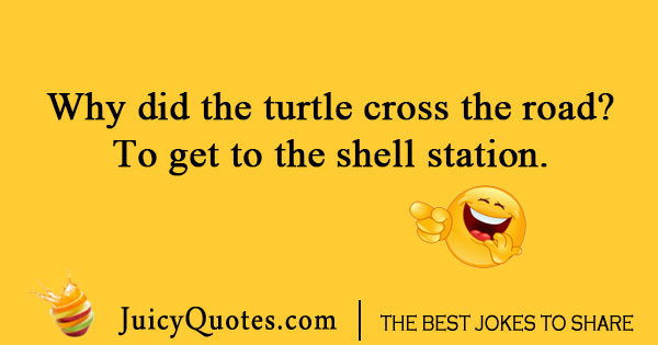 Turtle cross the road joke