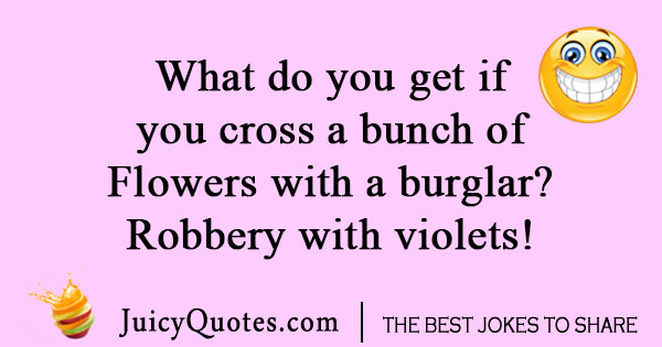 Flower and Burglar joke