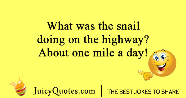 Snail on a highway joke