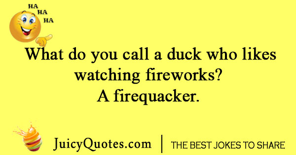 Duck and firework joke