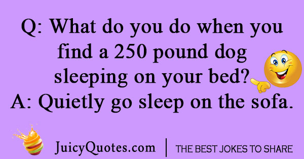 250 pound dog joke