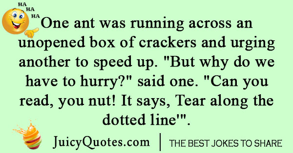 Funny ant joke to make you laugh