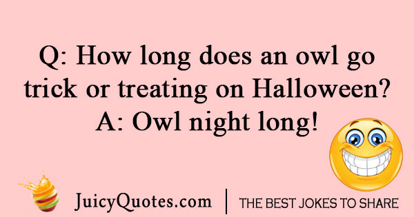 Image of: Jokes Funny Halloween Owl Joke Crafts By Courtney Funny Owl Jokes And Puns Owl Oneliners That Will Make You Laugh