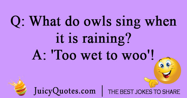 Singing owl joke