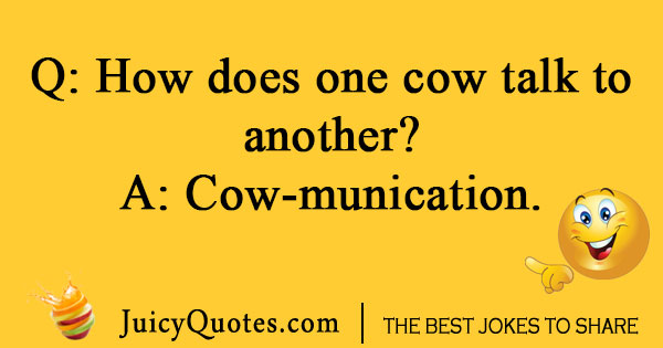 Talking Cow Joke
