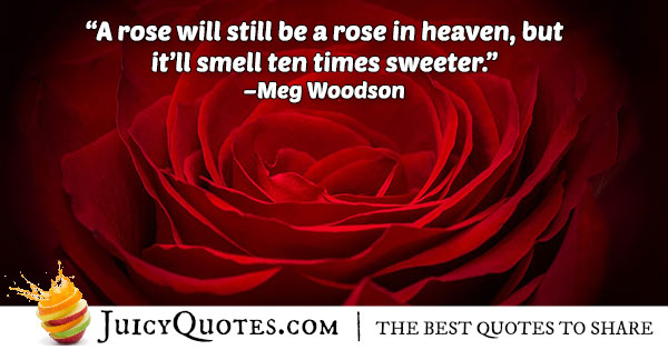 Roses in Heaven Quote