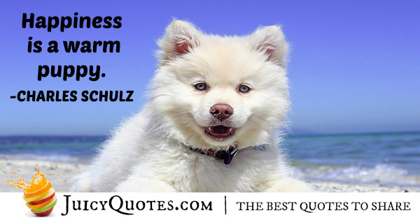 Animal Puppy Quote