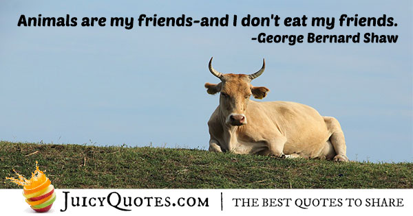 Animals Are My Friends Quote