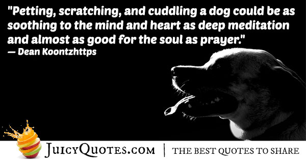 Petting An Animal Quote