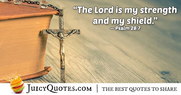 Bible Quote From Psalm