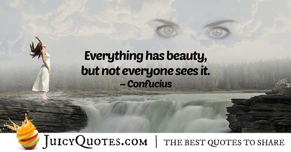 Everything Has Beauty Quote With Picture