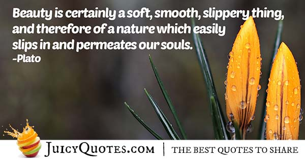 Soul and Beauty Quote