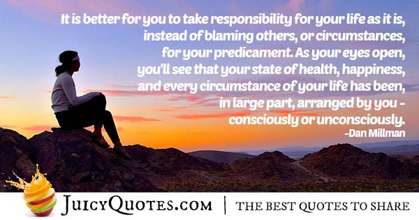 Responsibility And Blame Quote With Picture