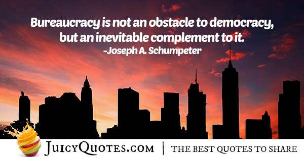 Bureaucracy and Democracy Quote