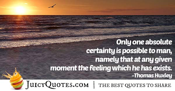 Certainty About Feelings Quote
