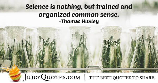 Organized Common Sense Quote