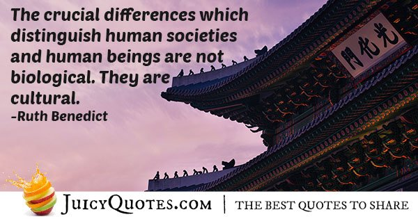 Cultural Differences Quote