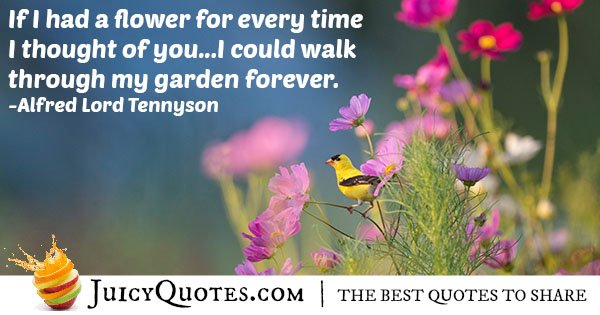 Cute Flower Quote