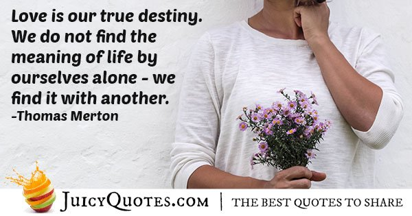 Love and Destiny Quote