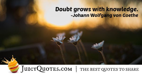 Doubt and Knowledge Quote
