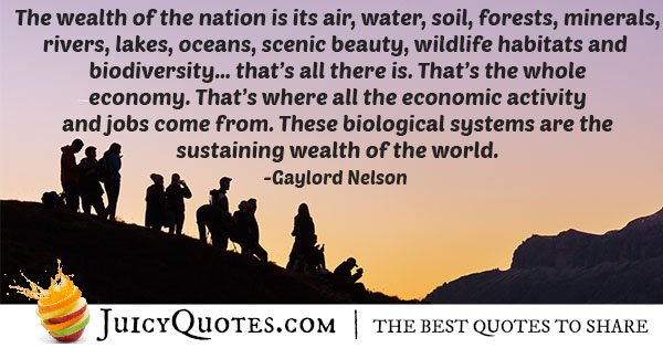 Wealth of a Nation Quote