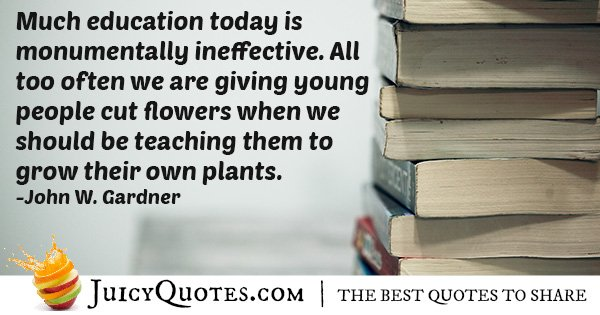 Ineffective Education Quote