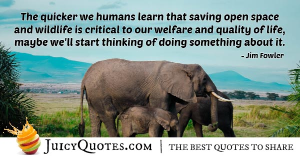 Welfare And Quality Of Life Quote With Picture