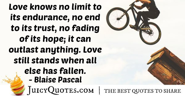 Endurance of Love Quote