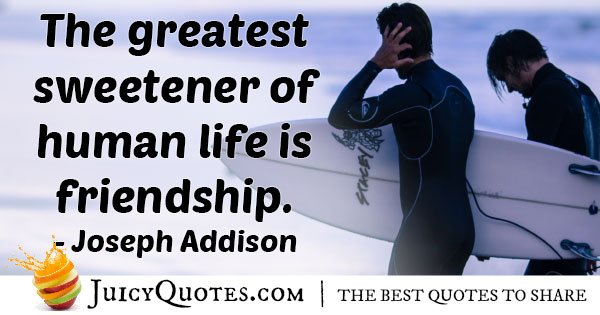 Life and Friendships Quote