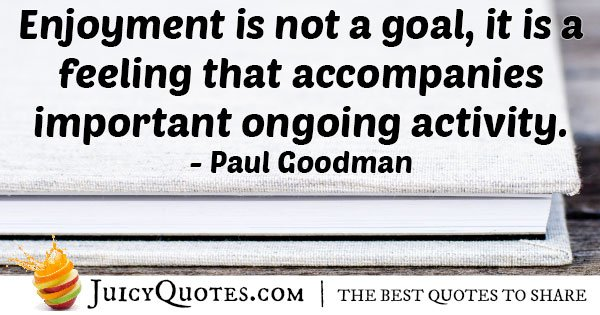 Enjoyment is Not a Goal Quote