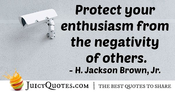 Protect Your Enthusiasm Quote With Picture Best Enthusiasm Quotes