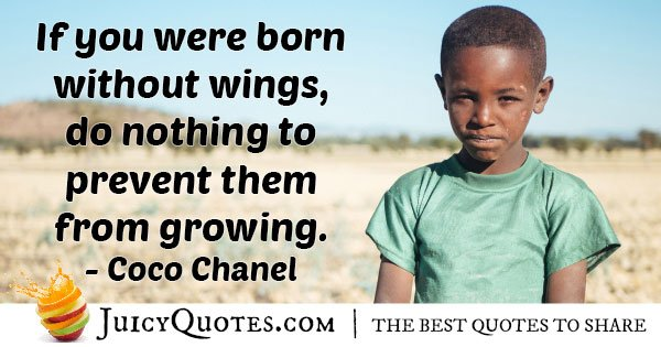Wings to Grow Quote