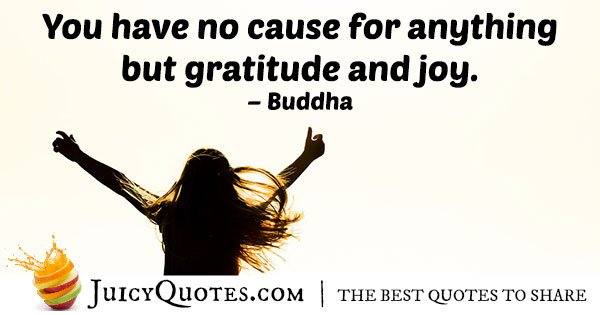Gratitude and Joy Quote