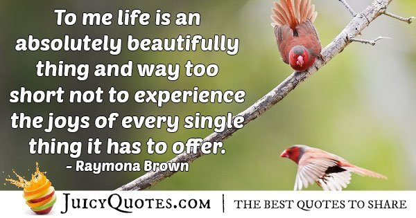 Experience The Joys Quote