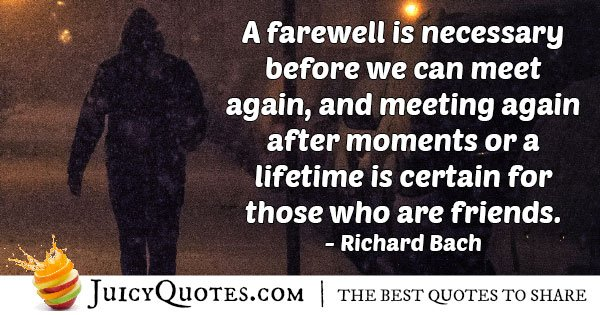 Goodbye to Meet Again Quote
