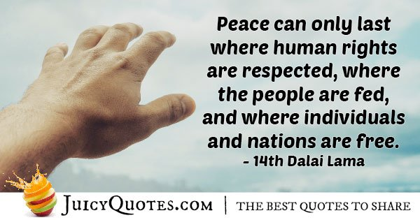 Respect Human Rights Quote